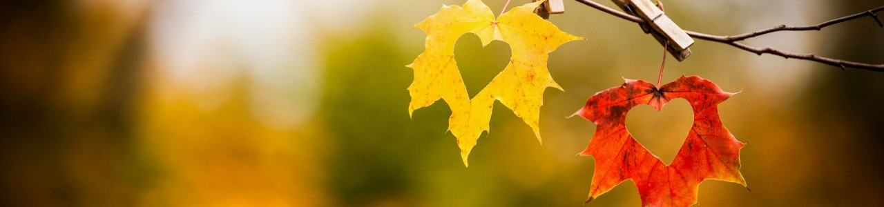 autumn-love-heart-wallpaper
