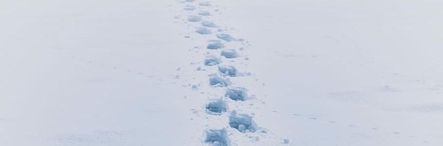 footprint-step-boot-impression 2